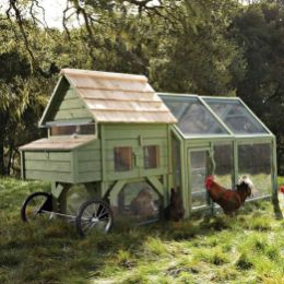 Extraordinary chicken coop decor ideas 19