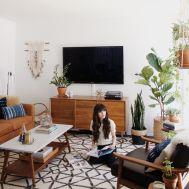 Elegant mid century living room furniture ideas 13