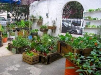 Modern urban gardening ideas 05