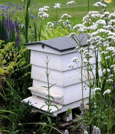 Stunning bee friendly garden designs for more productive gardens 37