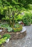 Lovely flowering tree ideas for your home yard 04