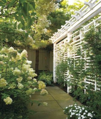 Lovely flowering tree ideas for your home yard 34
