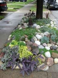 Great front yard rock garden ideas 03