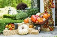 Modern diy autumn decorations to fall for this season 14