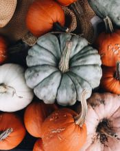 Modern diy autumn decorations to fall for this season 23