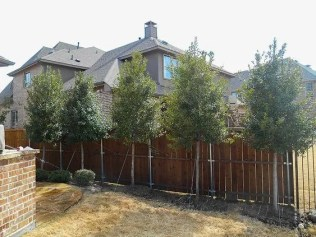 Popular privacy fence ideas 11