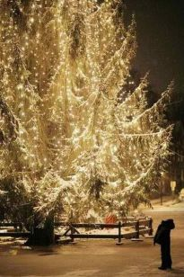 Awesome winter yard decoration ideas 03