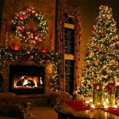 Fascinating christmas tree ideas for living room 30