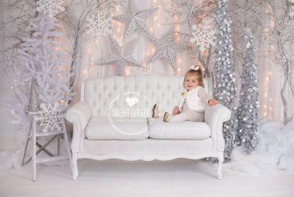 Wonderful winter wonderland decoration ideas 19
