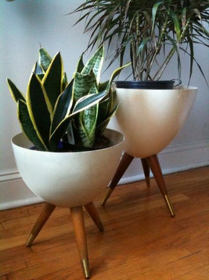 Cozy house plants decoration ideas for indoor 01