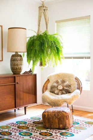 Cozy house plants decoration ideas for indoor 51