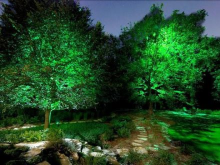 Gorgeous night yard landscape lighting design ideas 10