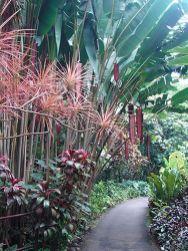 Stunning landscape pathways ideas for your garden 04