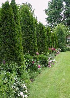 Stunning landscape pathways ideas for your garden 23