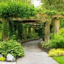 Stunning landscape pathways ideas for your garden 31