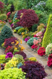 Amazing garden decor ideas 29