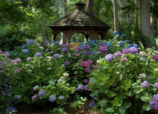 Charming flower beds ideas for shady yards 31