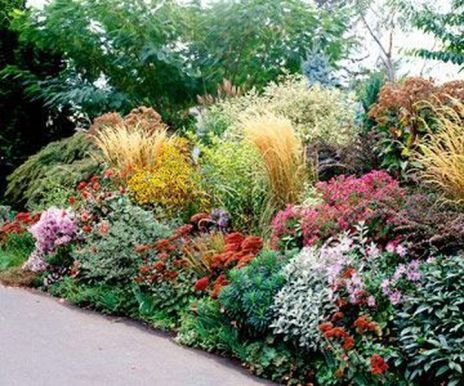 Charming flower beds ideas for shady yards 34