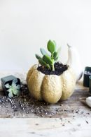 Modern diy thanksgiving decorations ideas for home 12