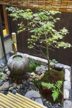 Outstanding japanese garden designs ideas for small space 03
