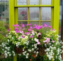 Attractive window box planter ideas to beautify up your home 12
