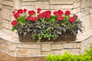 Attractive window box planter ideas to beautify up your home 34