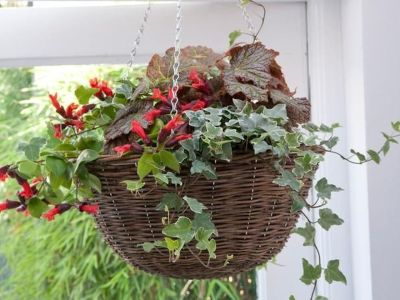 Attractive window box planter ideas to beautify up your home 35