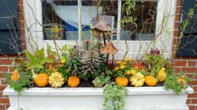 Attractive window box planter ideas to beautify up your home 52