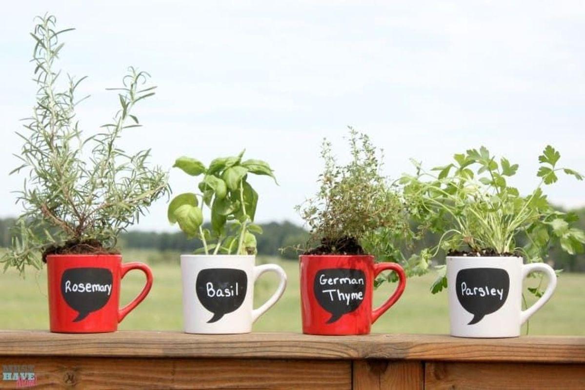 Impressive mini garden mug ideas to add beauty on your home 49