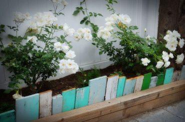 16-lawn-edging-ideas-homebnc-1024x671