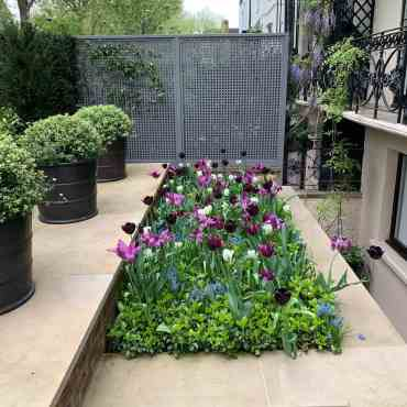 Fence-garden-trellis-ideas-butterwakefield