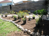 how-to | A Round Rock Garden