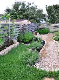 Texas Natives | A Round Rock Garden