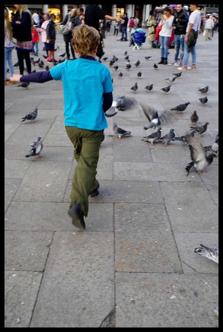 Chasing pigeons in St. Marks