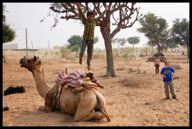 Done camel-top bowling