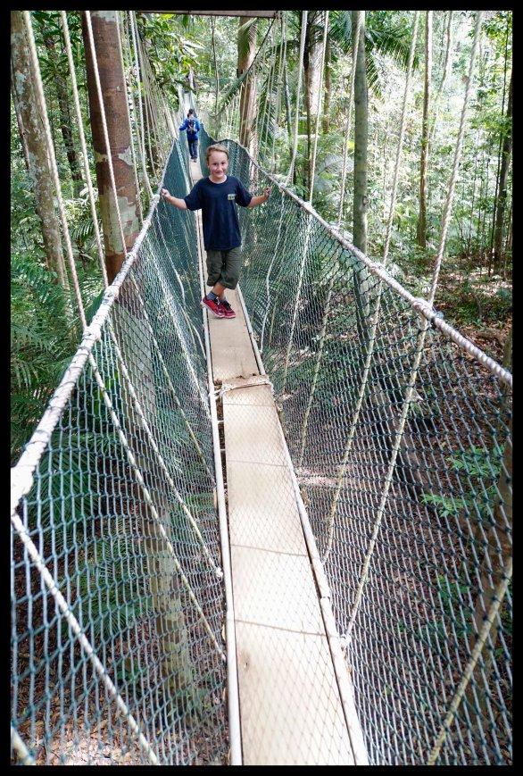 Taman Nagara National Park Canopy Walk
