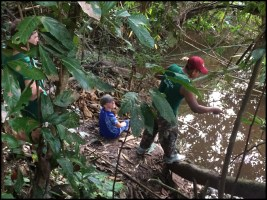 Fishing in the jungle