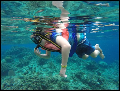 Snorkling in the clear water