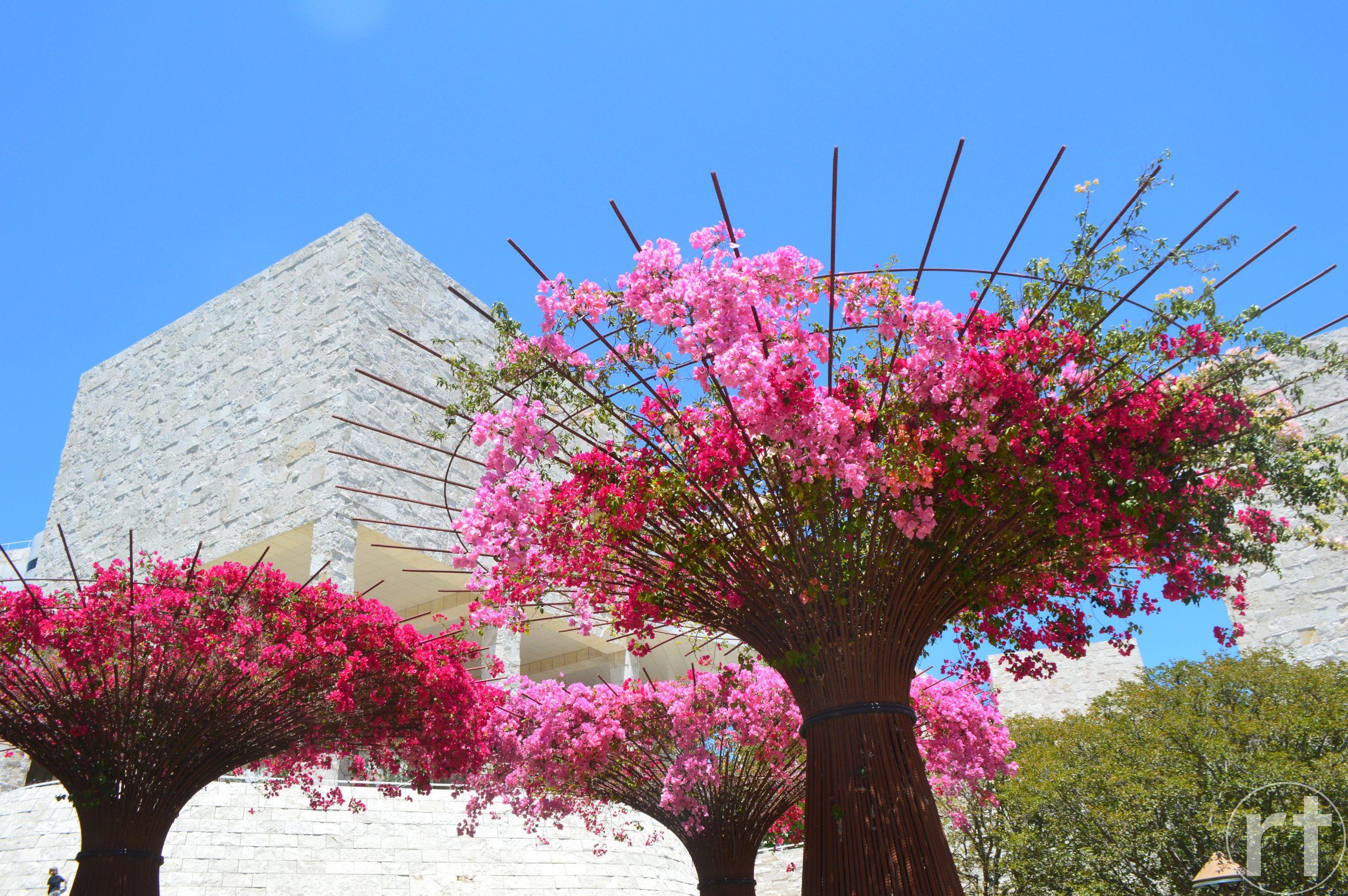 Getty Center Los Angeles Garden