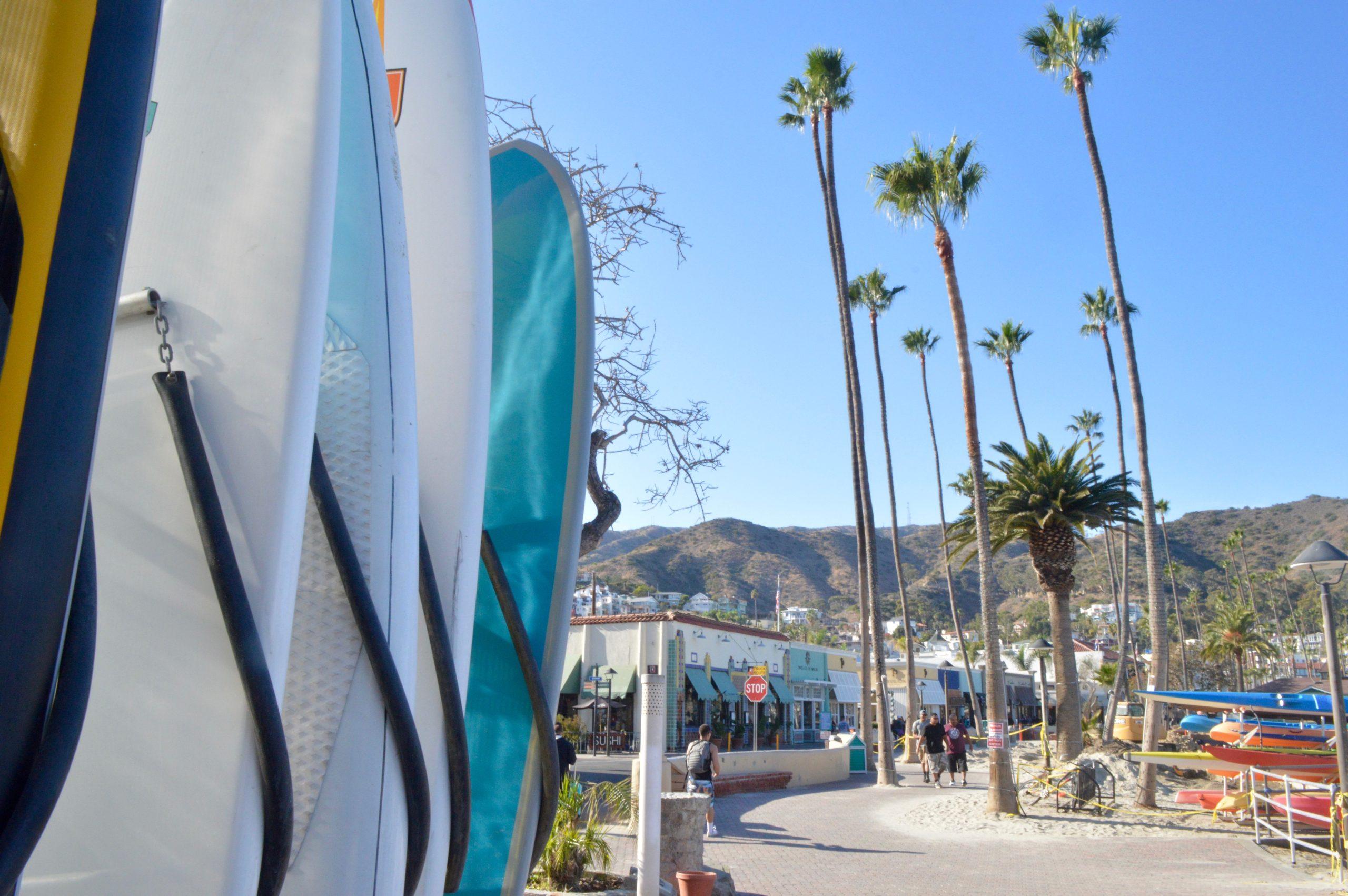 Catalina Island Avalon Paddle Board