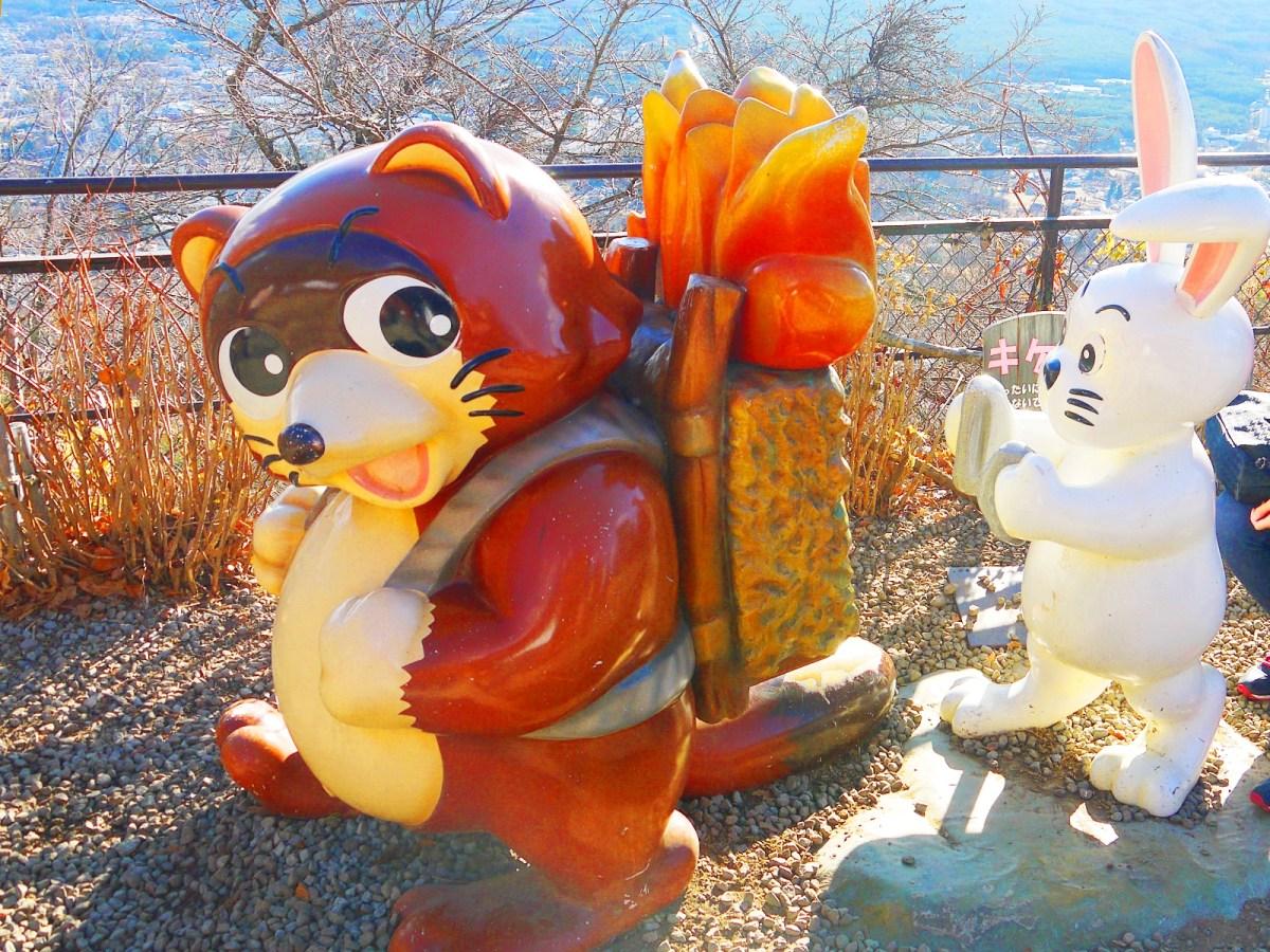 狸貓與白兔 | 天上山公園 | 富士山 | 山梨 | 巡日旅行攝