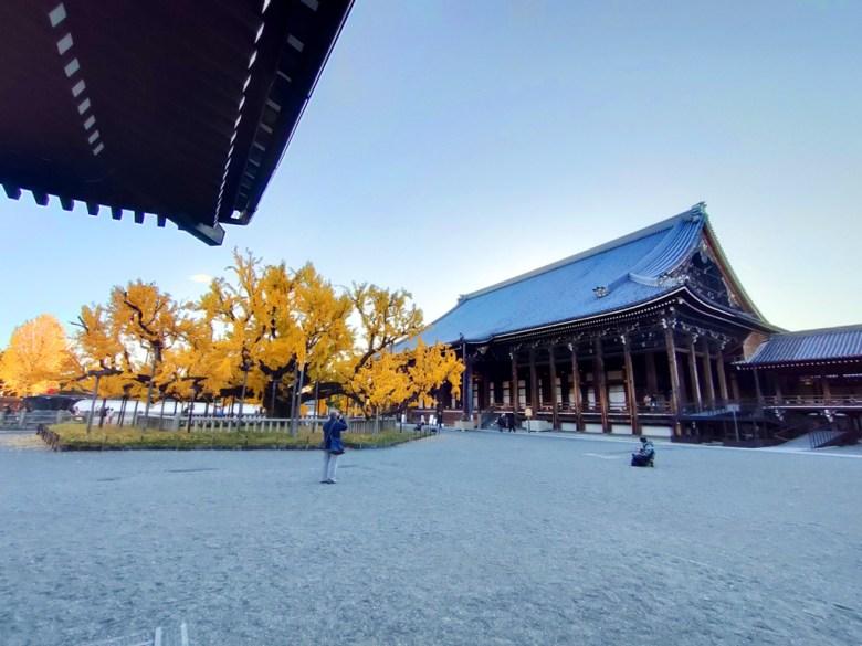 Ginkgo Biloba | にしほんがんじ | 西本願寺 | Kyoto | Kansai | Japan | RoundtripJp