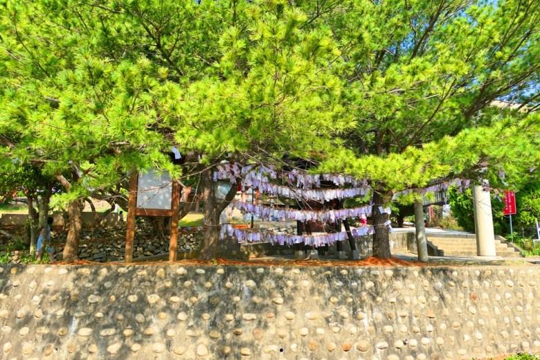 許願樹 | 第一鳥居旁 | つうせうじんじゃ | Miaoli | Taiwan | RoundtripJp