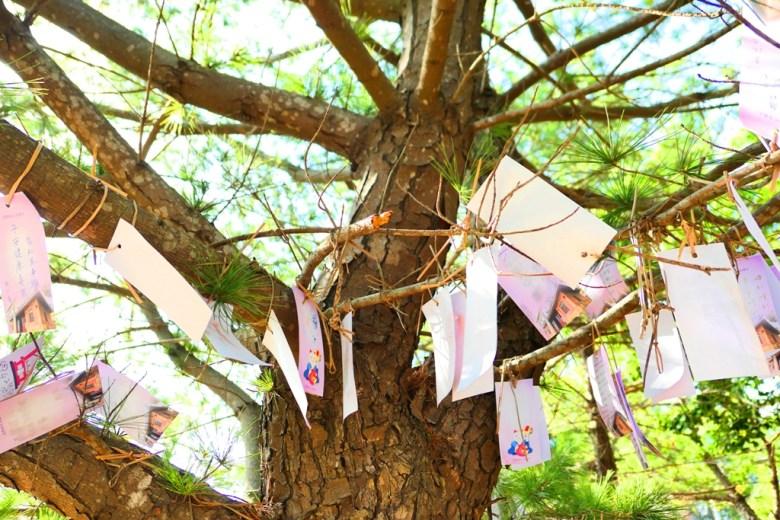 祈福卡 | 許願樹 | つうせうじんじゃ | Tongxiao Shrine | 和風臺灣 | 巡日旅行攝