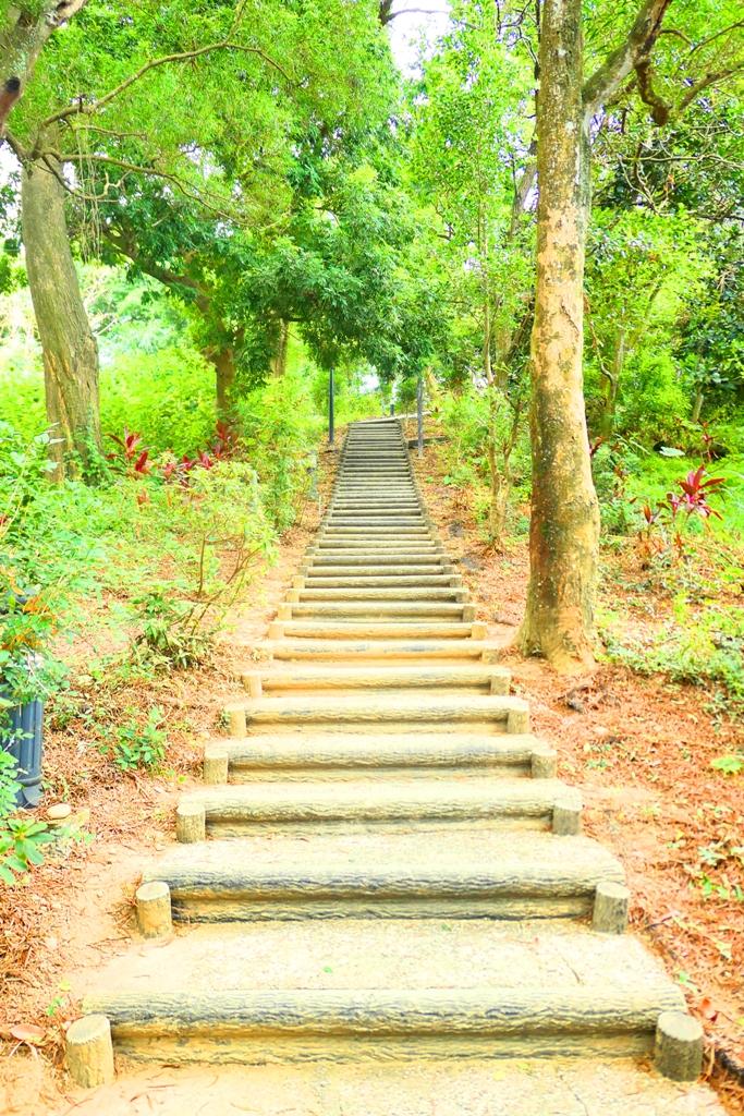 林內神社遺跡後方 | 龍過脈森林步道 | 林內公園 | 林內 | 雲林 | 臺灣 | 巡日旅行攝