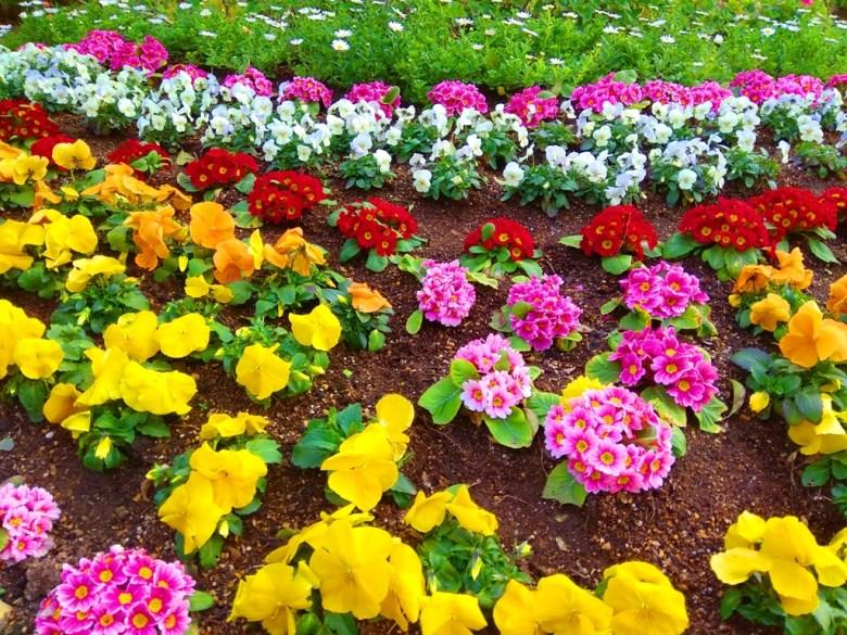 哥拉巴園 | グラバー園 | 西洋花園 | 長崎 | Nagasaki | ながさき | 九州 | 日本 | 巡日旅行攝