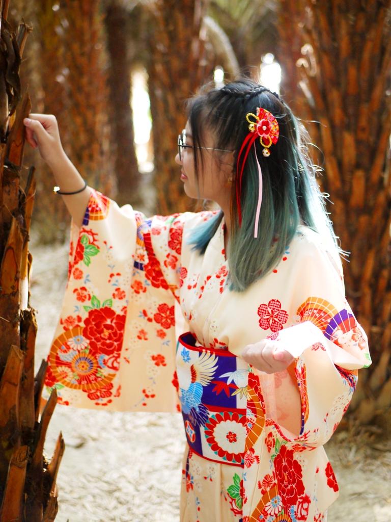 和服 | 中東海棗 | 海棗 | 椰棗 | 沙漠氣氛 | Dadu | Taichung | Wafu Taiwan | 巡日旅行攝