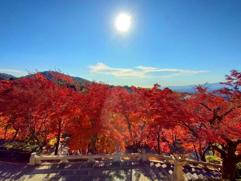 多彩日本 | 清水寺日出 | 日出之國 | 霓虹之國 | 日本的別稱 | 巡日旅行攝