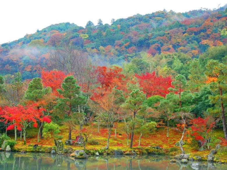 Colorful Japan | 曹源池庭園 | 萬景之國 | 奇觀之國 | 日本的別稱 | RoundtripJp