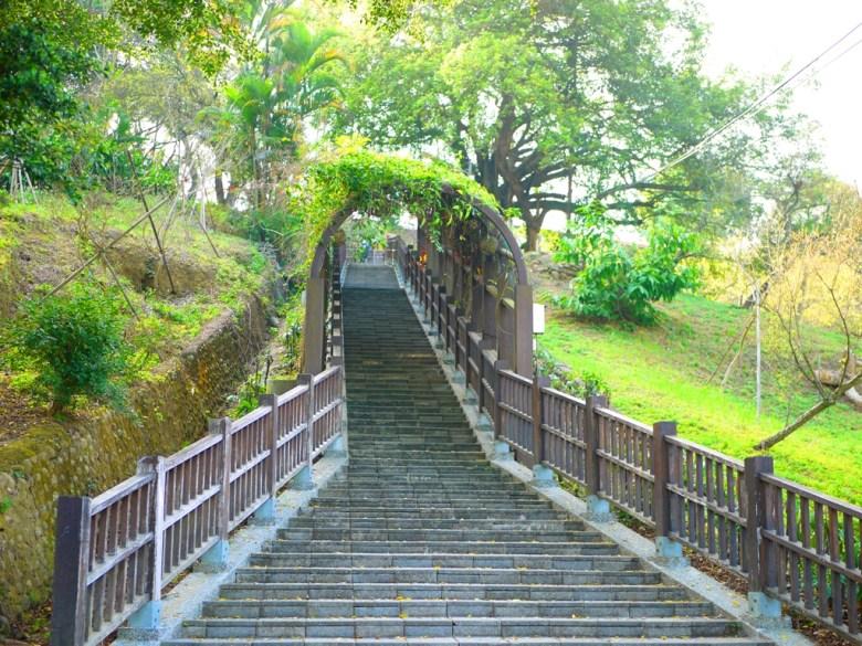 布滿藤蔓的綠色隧道 | 環境清幽 | 大自然 | 梅山公園 | メイシャンこうえん | Meishan Park | 梅山 | 嘉義 | RoundtripJp